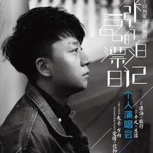 张磊——异乡人(C调简单版)